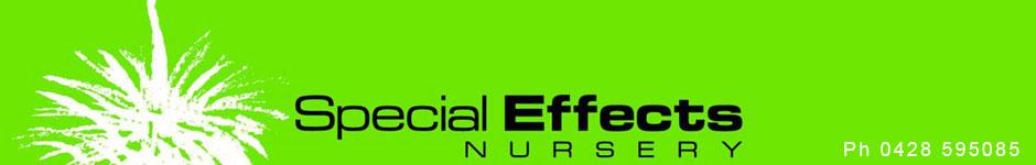 Special Effects Nursery